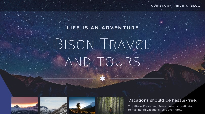 UX design example bison travel