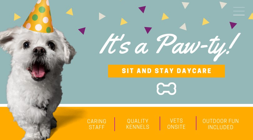 doggy daycare ux design example